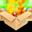 HofoSetup icon